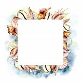 Watercolor Frame With Shells And Blue Water. Hand Painted Golden Sea Shells Square Card Isolated On  poster
