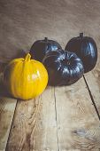 Colored Halloween Pumpkins On Wooden Desk. Difference Concept. Single Orange Pumpkin Among Three Bla poster
