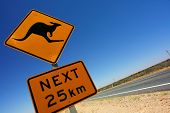 a kangaroo sign at an outback highway
