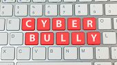 Cyber Bullying Red Button On Silver Keyboard .. poster