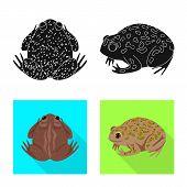 Vector Design Of Wildlife And Bog Symbol. Collection Of Wildlife And Reptile Stock Symbol For Web. poster