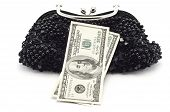 Dollars And Woman Bag