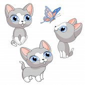 Kitten Kittens Gray Pet Isolated Illustration Vector poster