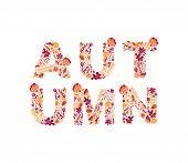 Floral Vector Autumn Text In Banner Design With Colorful Leaves In Background For Autumn Season. Aut poster
