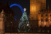 Chrristmas Tree Outside Houses Of Parliament In London With London Eye In Background