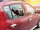 Broken Glass On The Passenger Door Of A Passenger Car Parked. The Concept Of Crime Of Car Theft, The poster