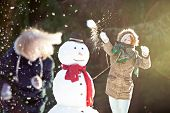 image of snowball-fight  - Snowball fight - JPG