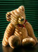 Portrait Of A Teddy Bear poster
