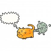 pic of farting  - cartoon farting cat - JPG