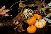 picture of cornicopia  - Basket filled with autumnal thanksgiving colors and items - JPG