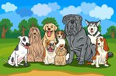 stock photo of english-mastiff  - Cartoon Illustration of Funny Purebred Dogs or Puppies Group against Rural Landscape with Blue Sky - JPG