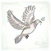 Hand Drawn Peace Dove Symbol With Texture Background Eps10 File.