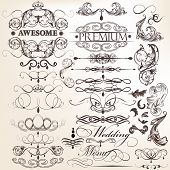 Collection Of Calligraphic Decorative Elements For Design