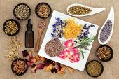 stock photo of wiccan  - Herbal medicine selection also used in pagan witches magical potions over old paper background - JPG