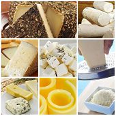 a collage of pictures of different kind of cheese