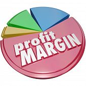 Profit Margin Words Pie Chart Net Earnings Money Income