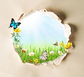 Conceptual spring theme with gappy paper and spring meadow with butterflies and blooming chamomiles