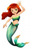 pic of mermaid  - Illustration of a pretty mermaid on a white background - JPG