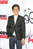 LOS ANGELES - MAR 5: Karan Brar at the premiere of 'Mr. Peabody & Sherman' at Regency Village Theater on March 5, 2014 in Los Angeles, California