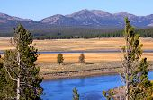 Scenic Yellowstone river in Yellowstone national park