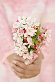 Close-up of woman's hands holding fresh spring flowers. Very shallow DOF. Selective focus on the flowers.
