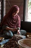 Extracting The Argan Kernal