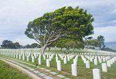Cemetery In Point Loma San Diego