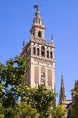 Giralda Cathedral
