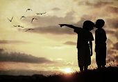 image of grass bird  - Kids silhouette looking at birds on the sky in air - JPG