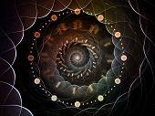 pic of symmetry  - Radial Symmetry series - JPG