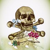 pic of skull bones  - Skull and Flowers Vector Illustration Day of The Dead - JPG