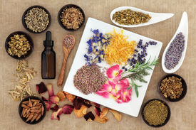 stock photo of wicca  - Herbal medicine selection also used in pagan witches magical potions over old paper background - JPG