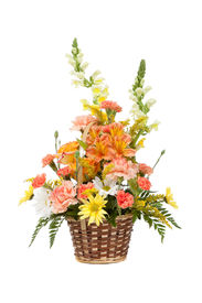 image of gift basket  - Flower arrangement including carnations irises daisy greenery in a wicker basket on a white background - JPG