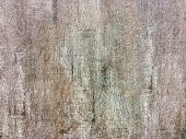 Tiles Wall