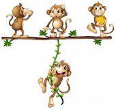 Illustration of monkeys swinging on a vine