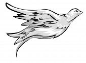Illustration Featuring a Flying Dove