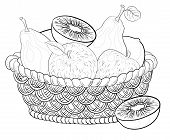 Basket with fruits, contours