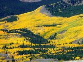 Fall On Independence Pass