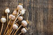 image of opiate  - Poppy heads on a vintage wooden table - JPG