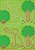 Squirrel Maze