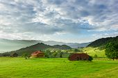 Beautiful Landscape With Green Grass