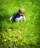 Young Boy Outside Pointing To A Dandelion Flower