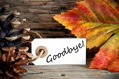 picture of say goodbye  - An Autumn Label with the Word Goodbye on it Fall Background - JPG