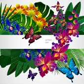 Floral design background. Tropical orchid flowers, leaves and butterflies.