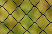 Metallic Net With Green Background