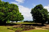 foto of french culture  - A culturally significant site in the south of raiatea island in French Polynesia - JPG