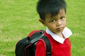stock photo of heavy bag  - Kids school bag with grass in the background - JPG