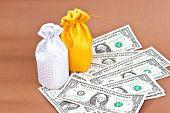 the money bag
