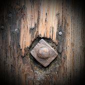 Old Metallic Nail In Wood