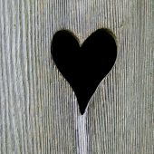 Heart In A Toilet Door